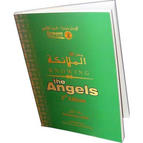 Knowing the Angels (Book 2)