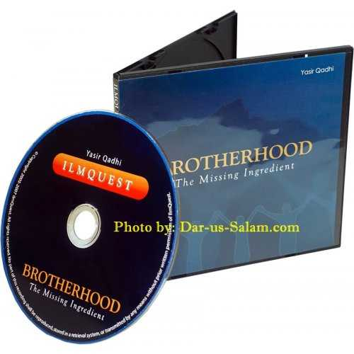 Brotherhood - The Missing Ingredient (CD)